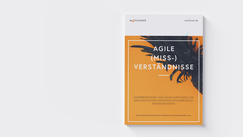 Agile Missverständnisse: Das kostenlose PDF